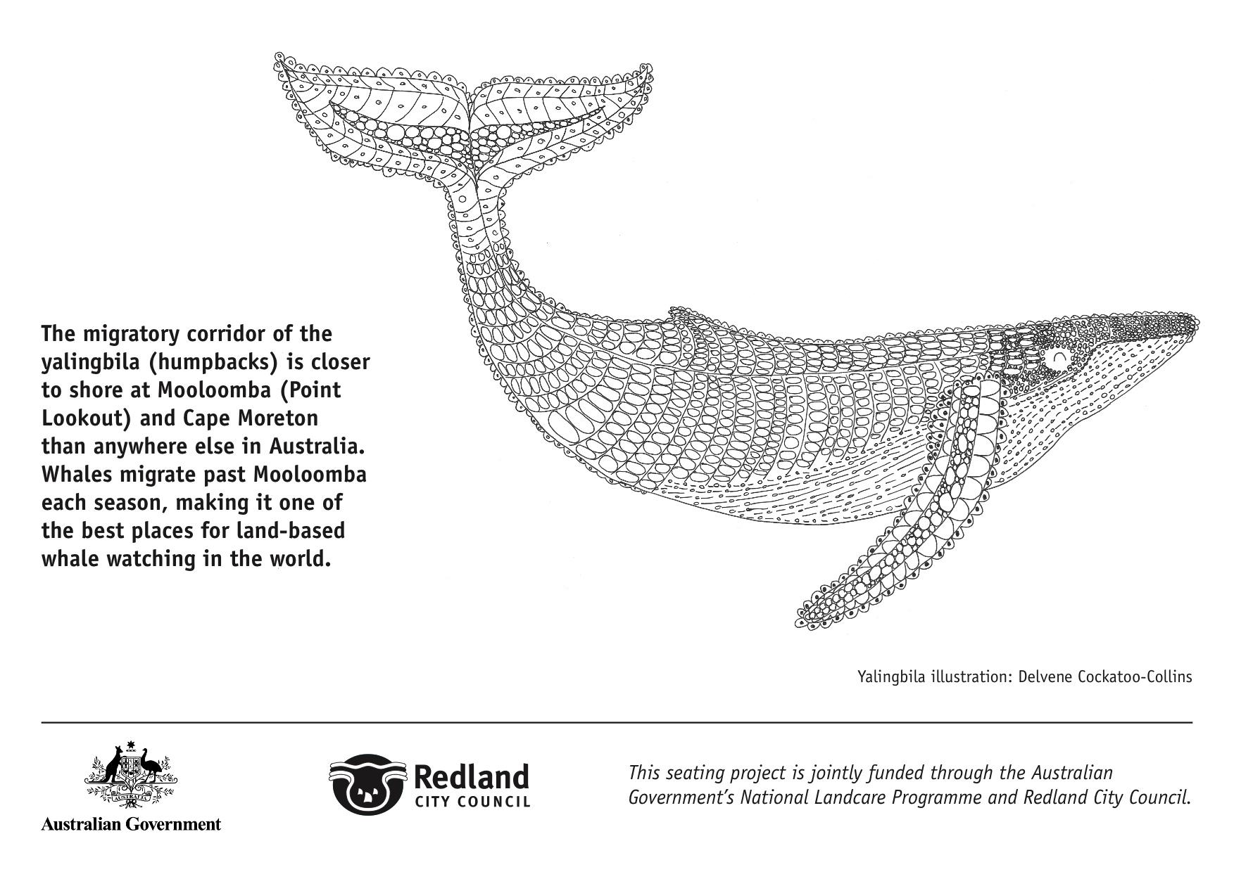 Whale Plaques for cv jpeg copy